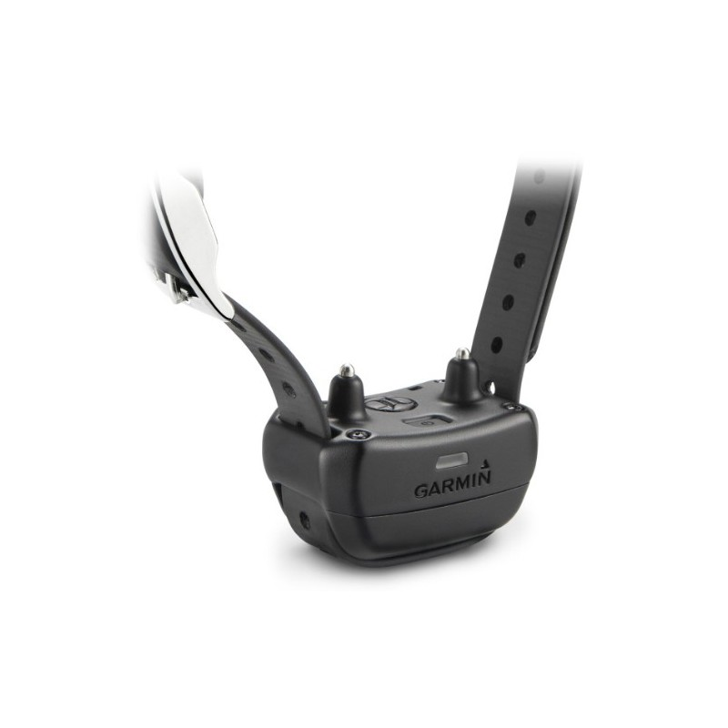 Collar Adiestramiento Garmin PT10 para mandos Pro